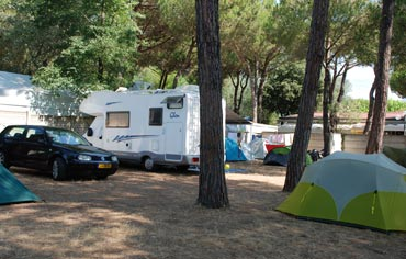Camping Lilly Pineta has pitches for Caravan and Roulotte in Marina di Massa
